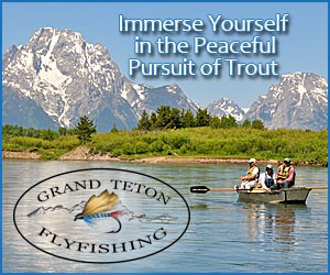 Grand Teton Fly Fishing - Let us show you the very best in Fly Fishing in Jackson Hole, & Grand Teton/Yellowstone National Parks! Our professional guides have over 25 years of experience! Tight Lines!
