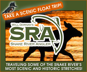 Will Dornan's Scenic River Trips - River trips.