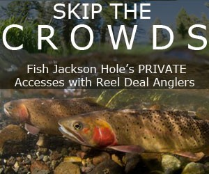 Reel Deal Anglers - Fishing guides.