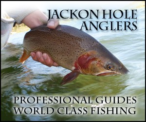 Jackson Hole Anglers - When it comes to fishing Jackson Hole regional waters, we are the experts! Full & 1/2 day trips on the Snake, Green, New Fork and Salt Rivers. Book now for summer 2014!