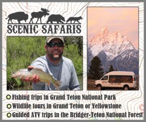 Scenic Safaris - National Park Safaris : National Park Safaris.
