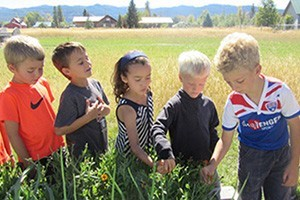 Teton Science Schools :: Bring the kids or family for and engaging outdoor experience to remember.  Summer activities include hiking, challenge course, canoeing, backpacking, and camping.