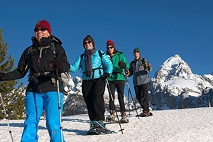 Hole Hiking Experience - Snowshoe Tours :: Naturalist guided snowshoeing tours in Grand Teton National Park or the surrounding National Forest. Snowshoe rental, bottled water, snacks, & transportation included.
