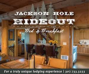 Jackson Hole Hideout - A beautiful hand-built and newly remodeled home nestled in the trees, in Wilson, WY. Wildlife out your bedroom window, gourmet breakfasts and friendly hosts!