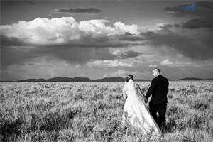 Imagewell Photography :: Weddings, reunions & portraits captured by an award winning photojournalist.
