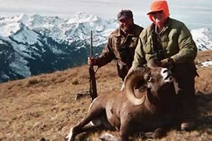 Spotted Horse - Big Game hunting experts :: Expertly guiding trophy-seeking hunters since 1961. Our camp is in the heart of Wyoming's prized bull elk, sheep, moose & mule deer country. See pricing, hunt areas & photos.