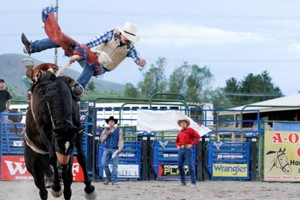 Jackson Hole Rodeo :: One of Jackson's best attractions, this family-owned rodeo is one of the best in the west! You'll see everything from bronc and bull riding to roping and barrel racing.