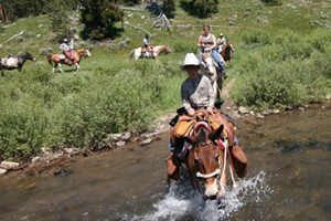 Yellowstone Mountain Guides - horse pack trips
