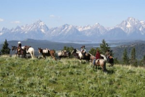 Teton Horseback Adventures :: 1, 2, & 3 hour trail rides from our horse camp in Pacific Creek on the boundry of Grand Teton National Park, east of Jackson Lake Lodge. The best trail rides in Jackson Hole!