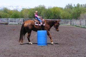 Introduction to Rodeo - Unique & Fun for all Ages :: No experience is necessary to learn rodeo basics on a working ranch in Wyoming!  So much fun for kids and adults alike.  It's ok to have some experience, too!