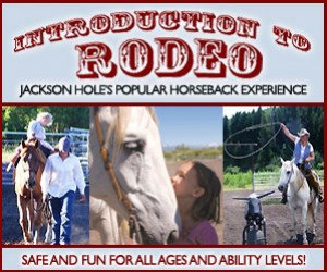 Introduction to Rodeo - Unique & Fun for all Ages : Experience what it's like to be a true rodeo rider with this incredible experience!
