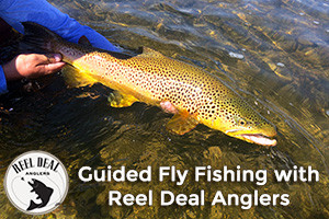 Reel Deal Anglers - guided fishing trips