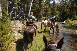 Wildman Adventures - backcountry adventures :: Spend a few days with us camping, riding, fishing, & enjoying some of the world's most exclusive outdoor settings. 3-4 day horseback vacations, 6-8 people per trip.