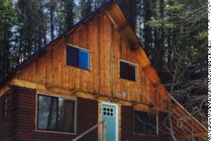 Wildman Adventures - Alpine WY Mountain Get Away! :: Located at the head of the Bridger National Forest entrance, just 30 minutes from Jackson. Horse Lovers, Snowmobilers, & Anglers Paradise! 3 bedroom, 1 batth, sleeps 10.