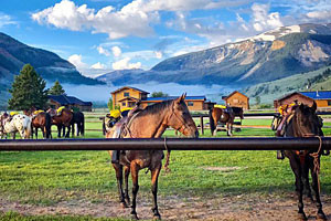Make 2019 your year for a Guest Ranch Experience