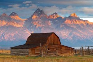 Jackson Hole Deluxe Tours - Tour & Lodging Package :: Embark on a 3 day, 2 night guided tour through Yellowstone and Grand Teton National Park! Enjoy scenic views, & observe & photograph amazing wildlife! Accommodations included.