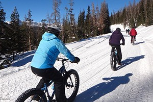 Teton Mountain Bike Tours - Winter Bike Tours