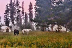 Bedroll & Breakfast - horseback, dine & glamp pkgs