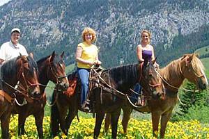 Willow Creek Horseback