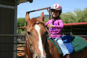 Puzzleface Western Riding Program :: Is your child a horse lover? Book our daily or weekly Summer Horse Camp to learn horsemanship and have FUN on horseback!