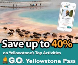 Save Money on Yellowstone's Top Attractions : $16 Pass gets you discounts on the best attractions and activities.