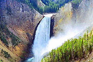 Yellowstone Day Tours :: The Best Tour Values Jackson!  Yellowstone or GrandTeton, lead by great local guides with info on the history, geology, geo-thermals & wildlife!  Private Groups Welcome!