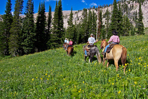 Beard Mountain Ranch - Overnight Pack Trips