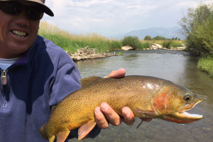 Mangis Fishing Guide Service - Salt River Guides