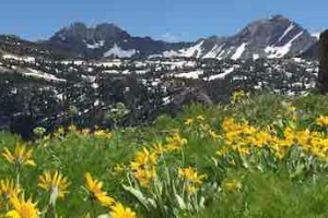 Teton Backcountry Guides: Professional Guides