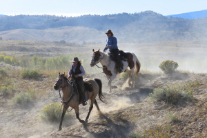 Dude Ranches in Dubois, Wyoming | CM Ranch