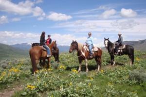 A-OK Corral - Horseback Rides