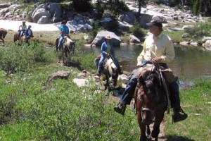 Dry Ridge Outfitters: Pristine Backcountry Trips