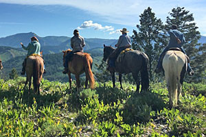 Box Y Lodge - summer ranch nightly packages