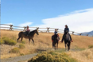 Dude Ranch in Cody Wyoming   Double Diamond X
