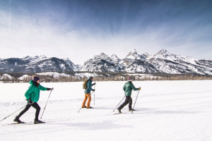 Cross County Ski Tours with EcoTour Adventures