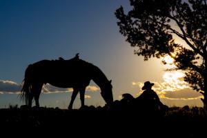Wyoming Dude Ranch near Jackson Hole | CM Ranch