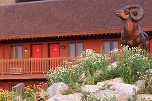Flat Creek Inn - overlooking National Elk Refuge
