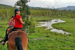 Bedroll & Breakfast - trail ride, glamp & dining