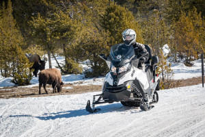 Scenic Safaris - snowcoach & snowmobile packages