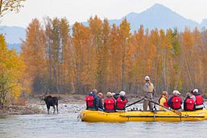 Teton Scenic Floats - Snake River trip