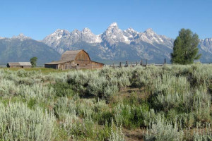 American West Tours - van tours, fishing & rafting