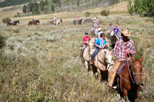 Willow Creek Horseback Rides | on the forest