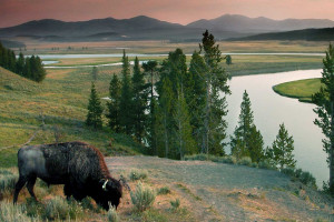 Wyoming Guide Company | Jackson Hole Private Tours