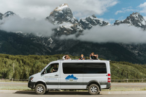 Wildlife Expeditions - Yellowstone & Grand Teton