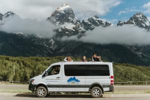 Wildlife Expeditions - Yellowstone Wildlife Tours