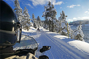 Yellowstone Snowmobiles Best Tours in Jackson Hole