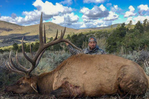 Best of the West Outfitters - Wyoming Elk Hunting