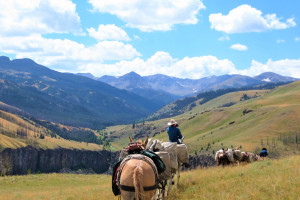 Best of the West Outfitters - Wyoming Pack Trips