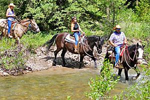 Willow Creek Horseback Rides & Pack Trips