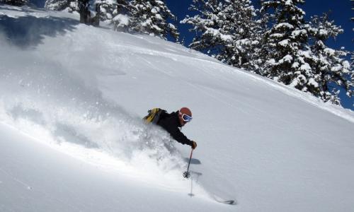 Jackson Hole Ski